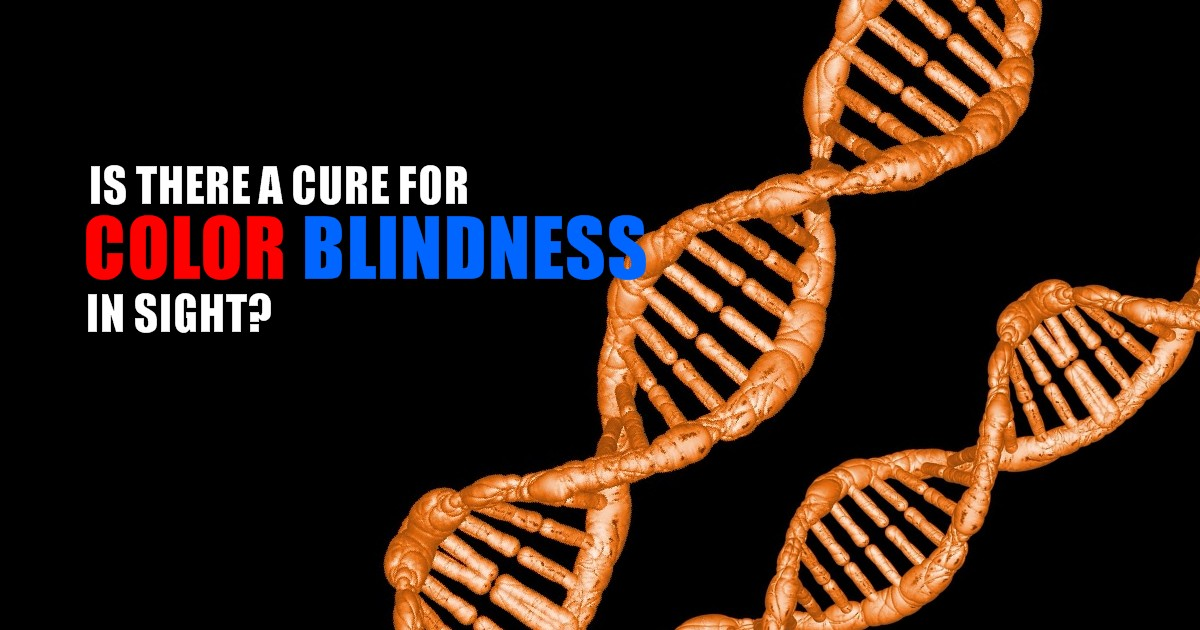 Is A Cure For Color Blindness In Sight